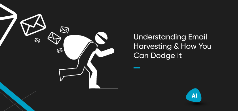 understanding-email-harvesting-&-how-you-can-dodge-it